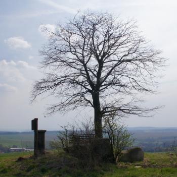 Langenwolmsdorf